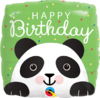 Foliopallo, Bday Panda